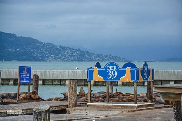 漁人碼頭-16.jpg