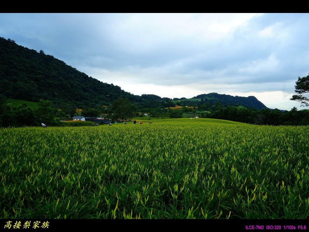 PhotoCap_024.jpg