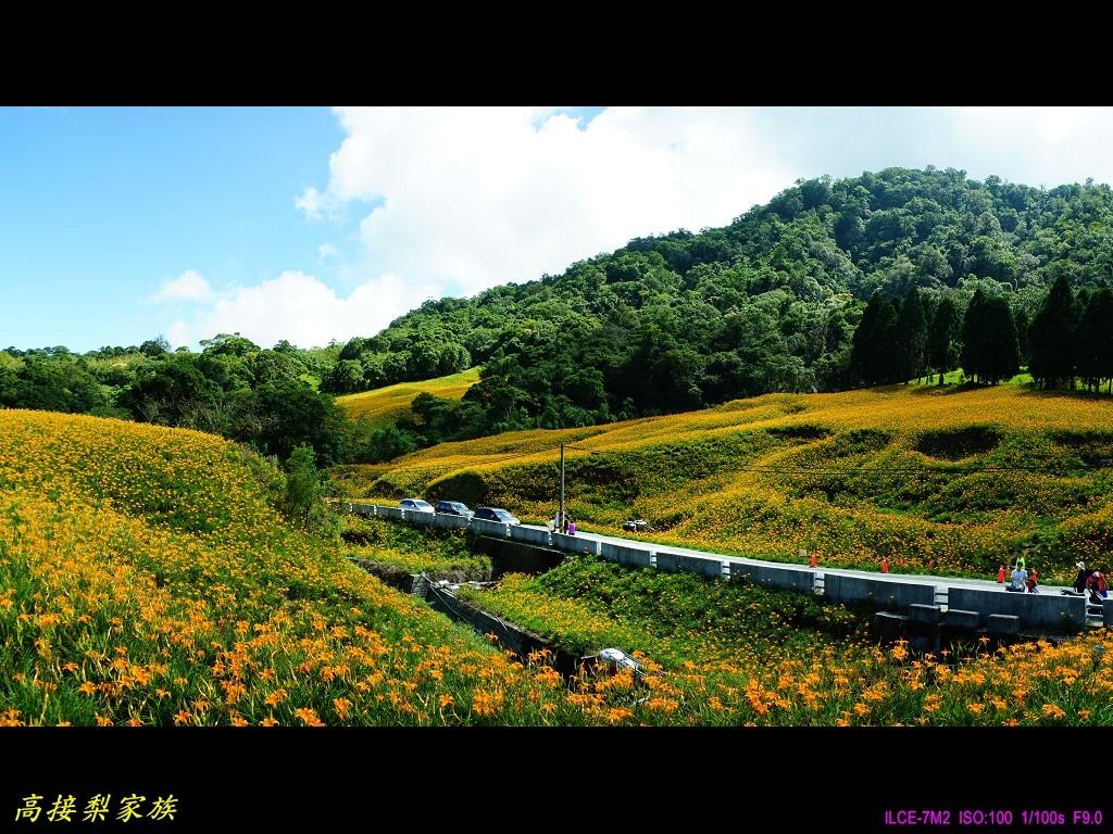 PhotoCap_063.jpg