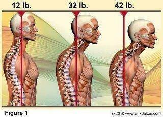 頭往前1吋脖子多承重9公斤20121016