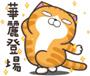 CAT-15.bmp