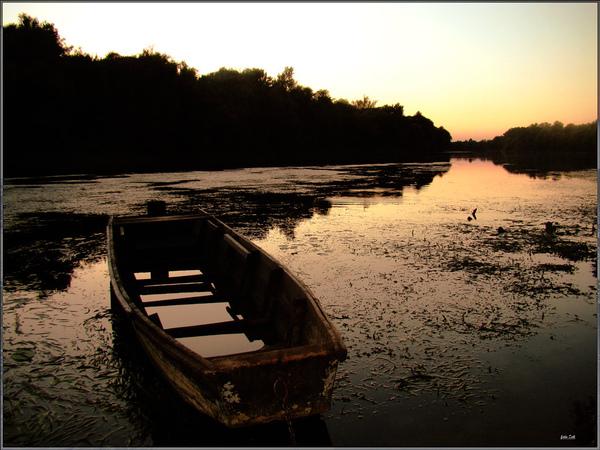 Boat_by_siscanin.jpg