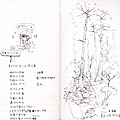 20170410PapaWaqa-16.jpg