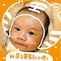 20100614_tiger.jpg