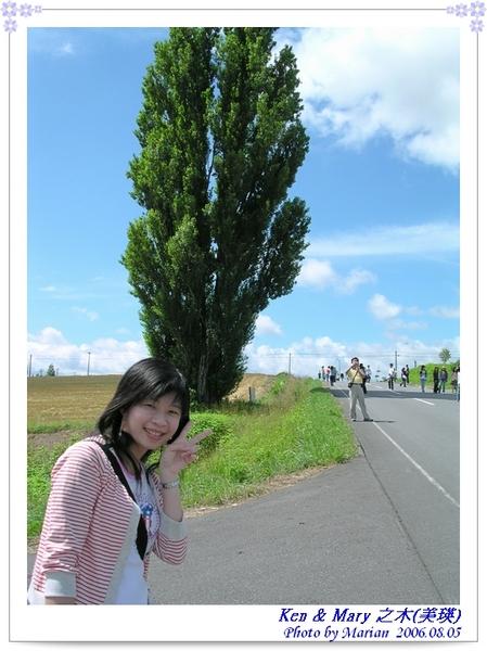 060805_09_Ken & Mary之木.jpg