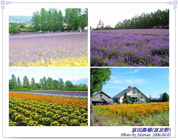 060805_22_富田農場.jpg