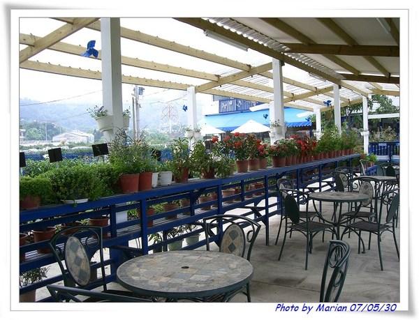 也是藍白風味的花園咖啡吧