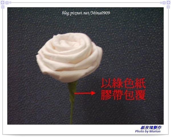 紙玫瑰_09.jpg