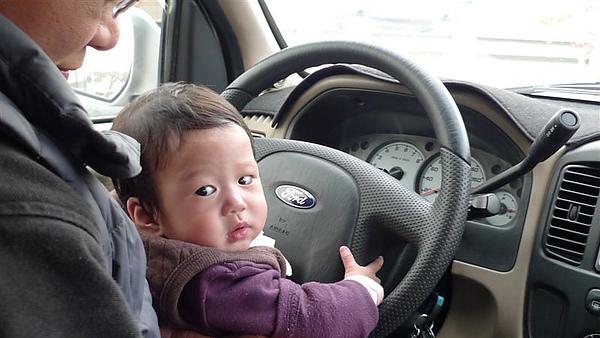 小娃開大車