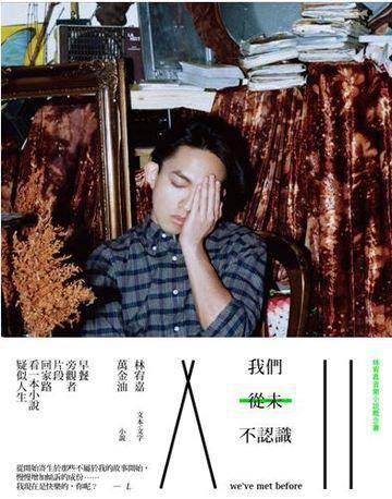 我們從未不認識:林宥嘉音樂小說概念書