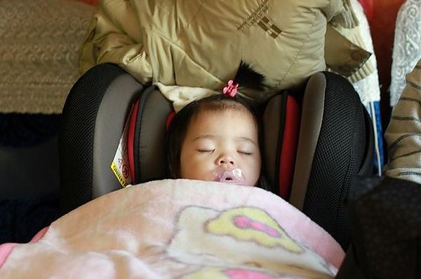 一上遊覽車就睡覺