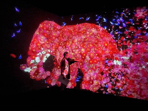 teamLab 台北 2021展覽:與花共生的動物們