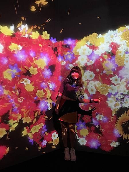 teamLab 台北展覽:與花共生的動物們