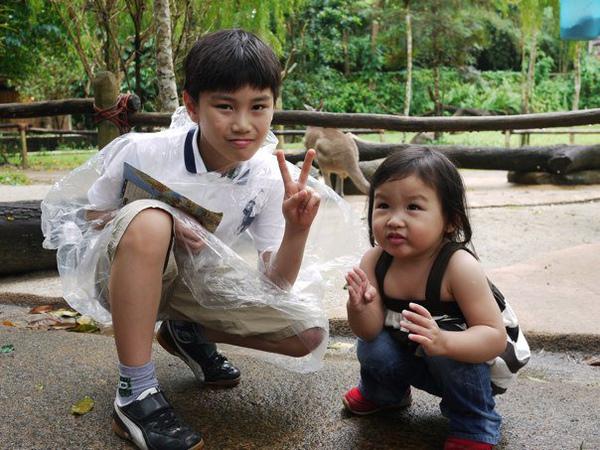 新加坡動物園.jpg