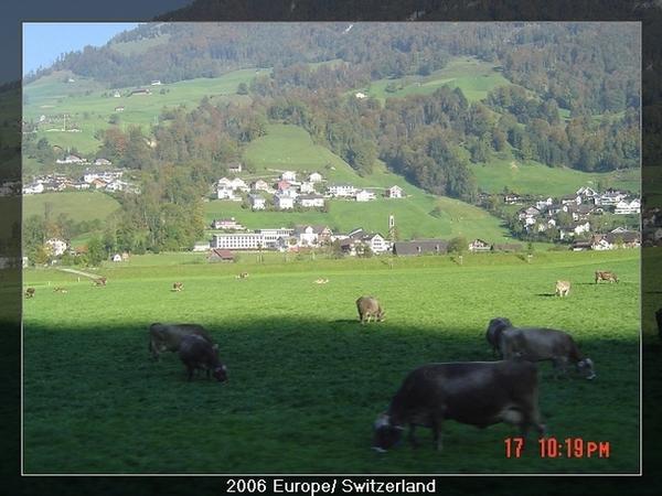 1017 瑞士
