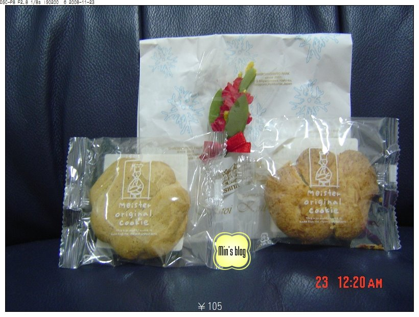 DSC00863 北海道戰利品 白色戀人餅乾 20081123.JPG