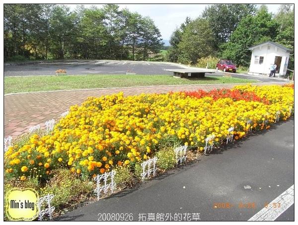 20080926 拓真館外的花草