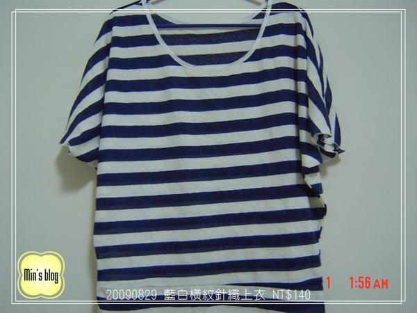 DSC02096 20090829 路邊攤藍白橫紋針織上衣 NT$140.JPG