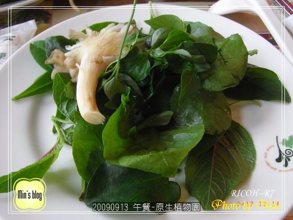 R0019139 午餐-原生植物園.JPG