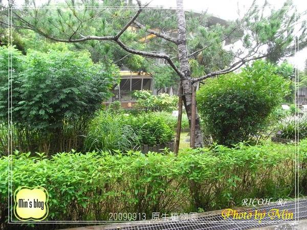 R0019147 原生植物園.JPG