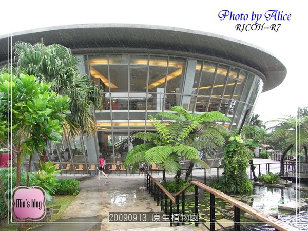 RIMG1002 原生植物園.JPG
