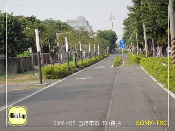 DSC00018 SONY-TX1練習 20091024.JPG