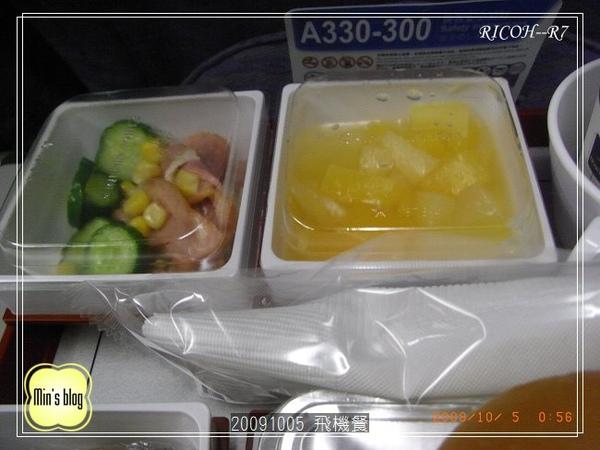 R001937420091004 飛機餐.JPG