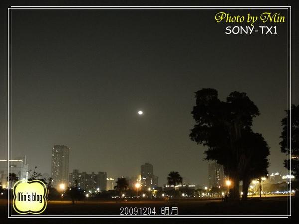 DSC00591 20091204 85大樓&明月.JPG