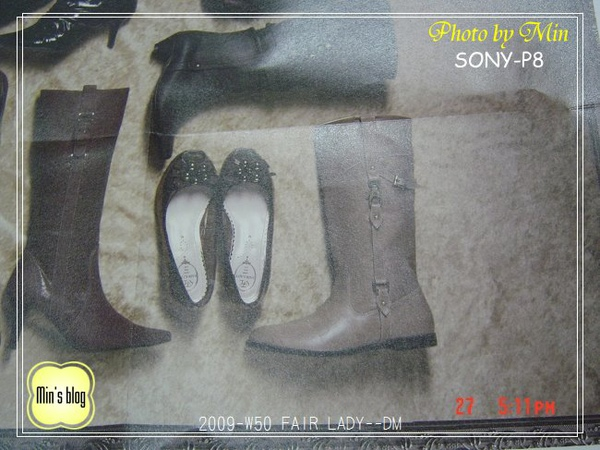 DSC02659 FAIR LADY--DM.JPG