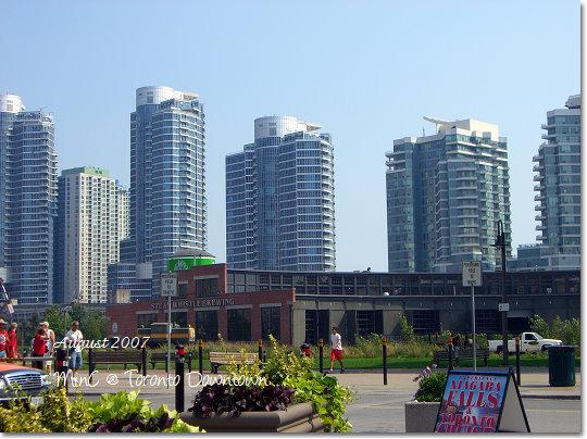 Toronto14.jpg