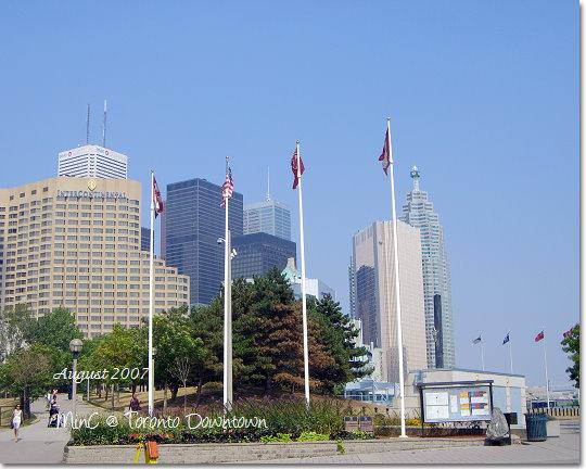 Toronto16.jpg