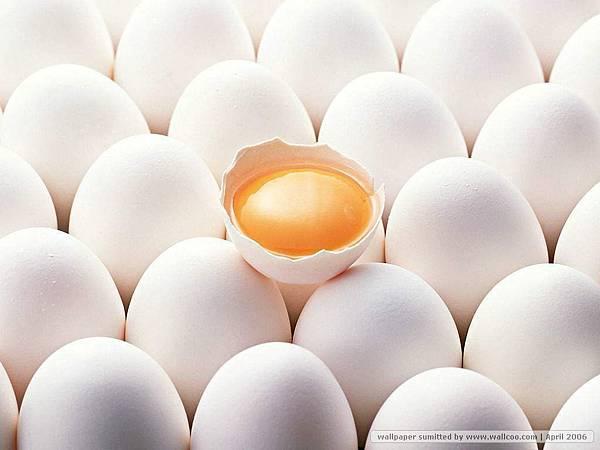 Food-Egg.jpg