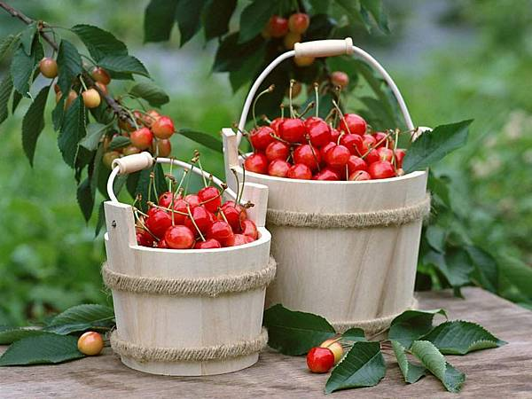 Fruit-Cherry.jpg