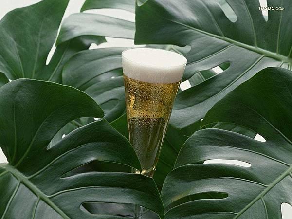 Drink-01.jpg