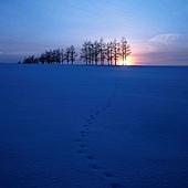 冬夜.jpg