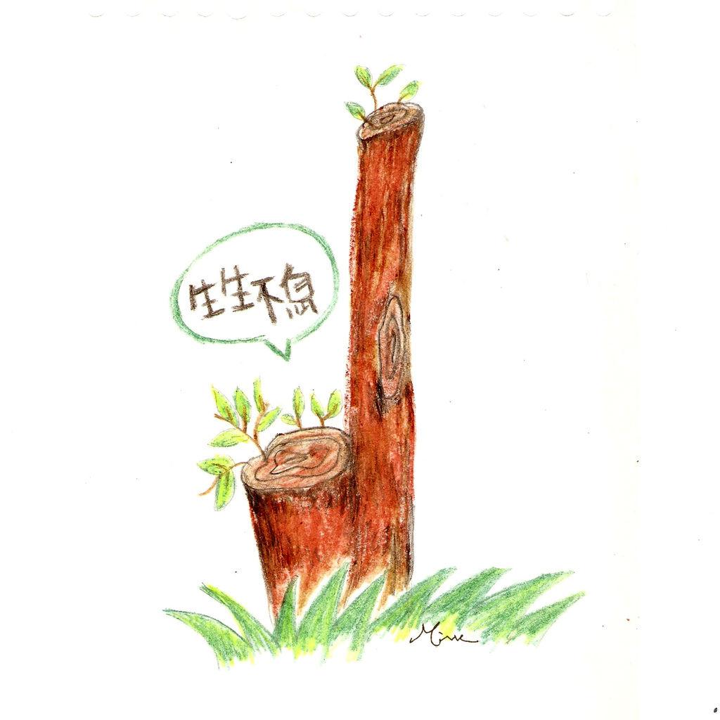 0403生生不息