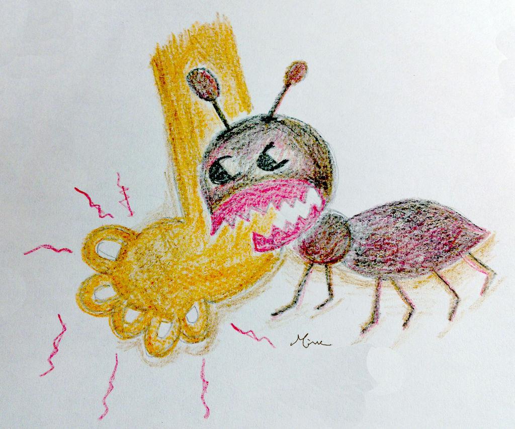 0422螞蟻