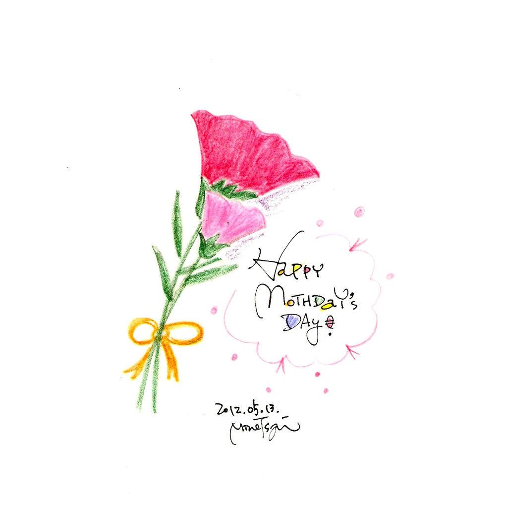 0513康乃馨