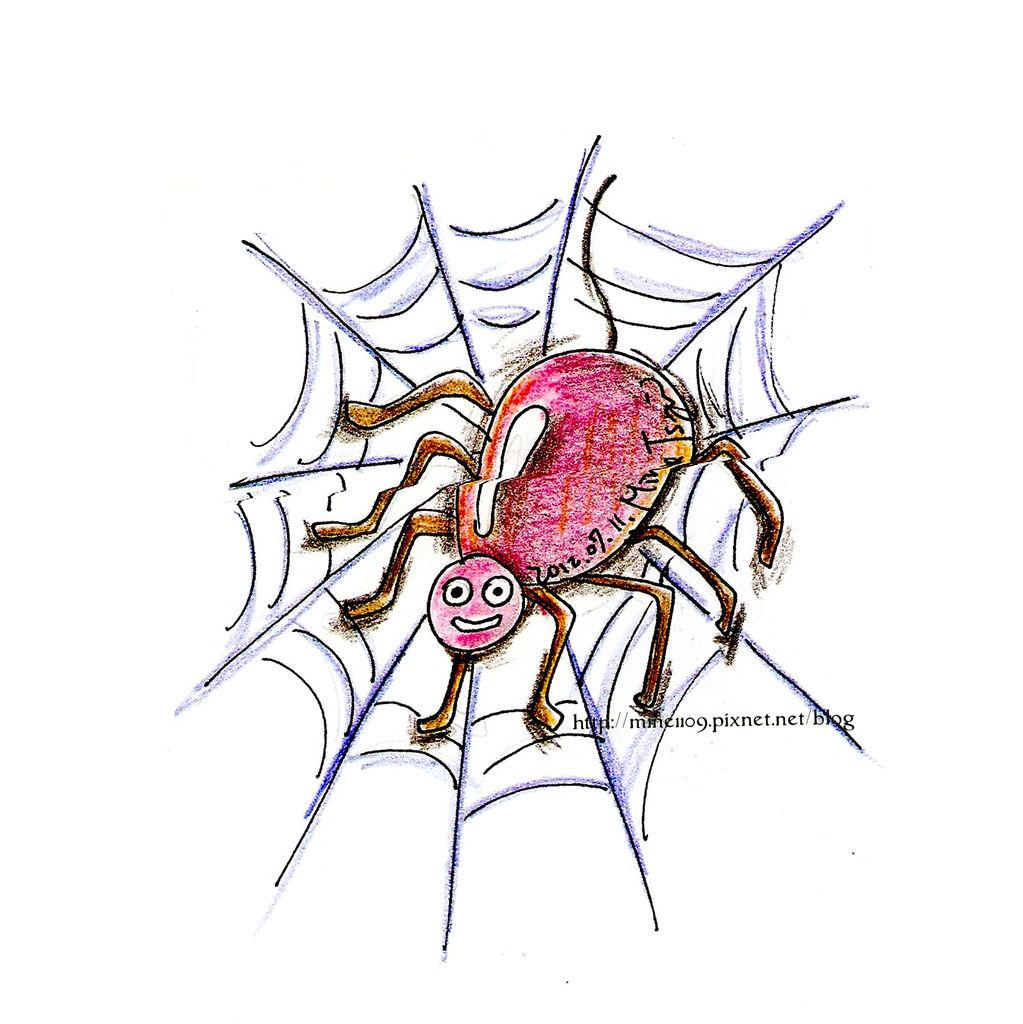 0711蜘蛛