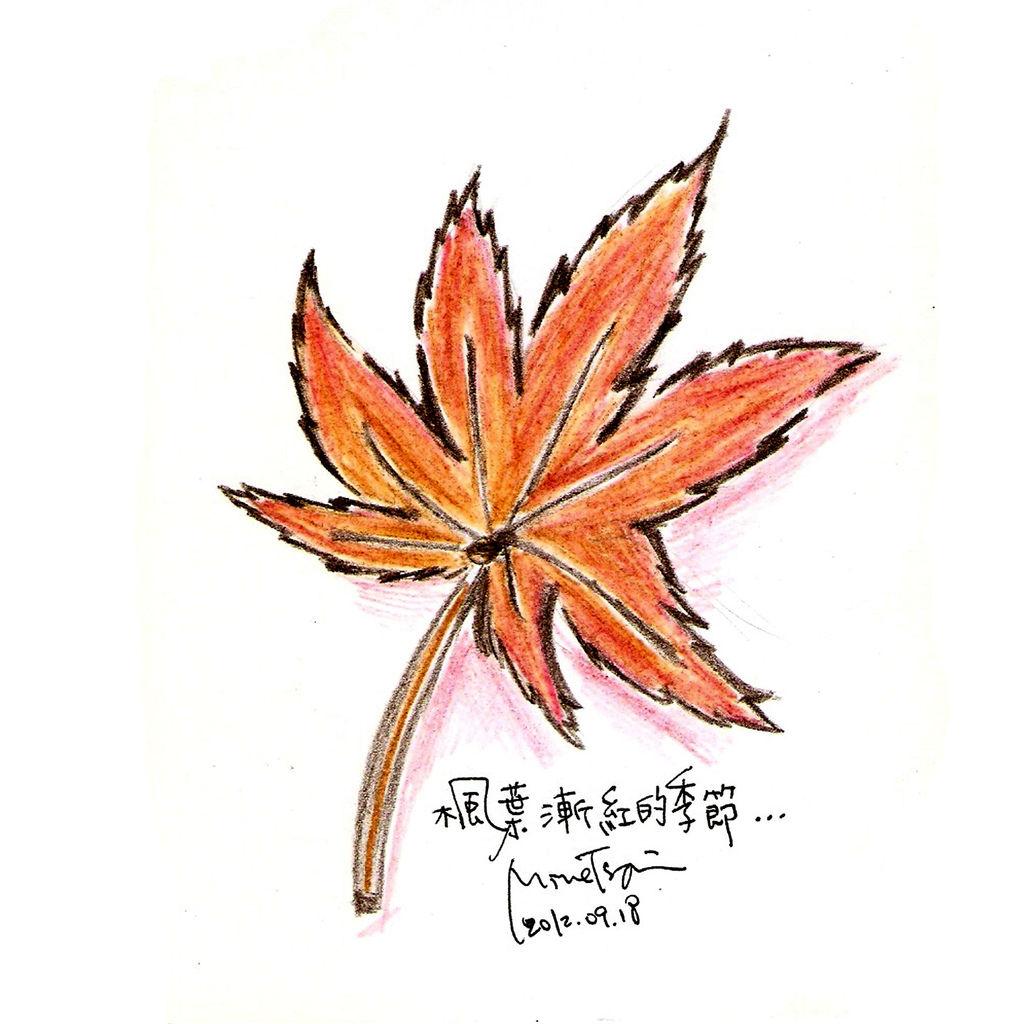 0919楓葉