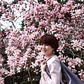 Kyoto_07_0301.JPG