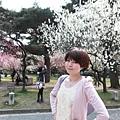 Kyoto_07_0317.JPG