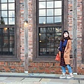 Akita_161102_0617.jpg
