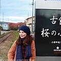 Akita_161102_1022.jpg