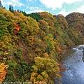 Akita_161103_0385.jpg