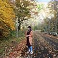Akita_161103_0577.jpg