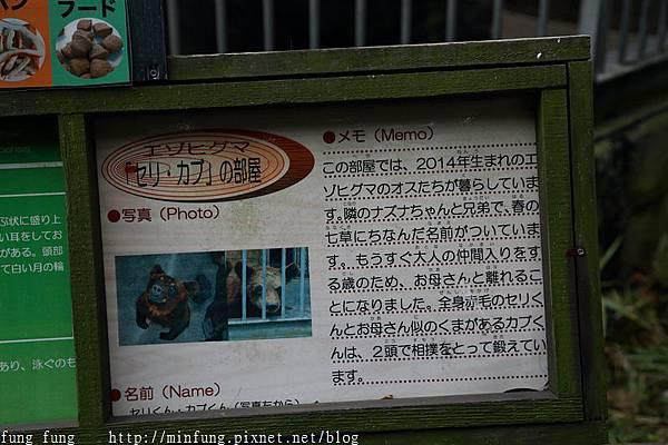 Kyushu_161108_031.jpg