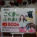 Kyushu_161108_075.jpg
