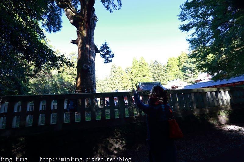 Kyushu_161111_173.jpg