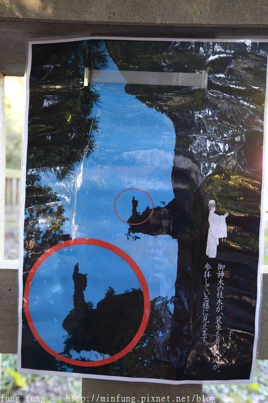 Kyushu_161111_178.jpg